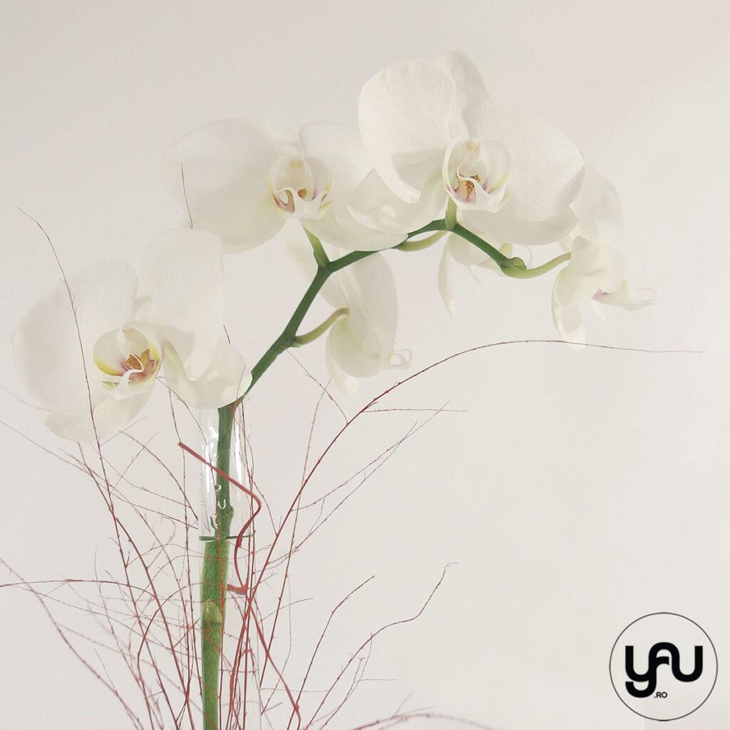 Aranjament floral orhidee